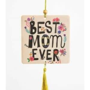 blanket, deken, natural life, cat